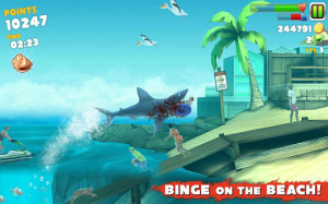 shark II